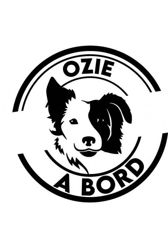 Border Collie - Prénom2